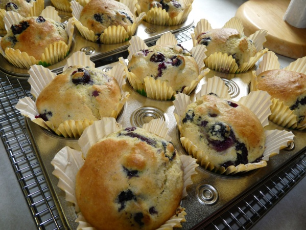 12 large Blueberry Cornmeal Muffins