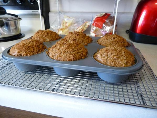 Rhubarb Sunflower Seed Muffins