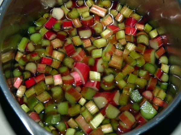 In a large soup pot, place diced rhubarb and cover with water