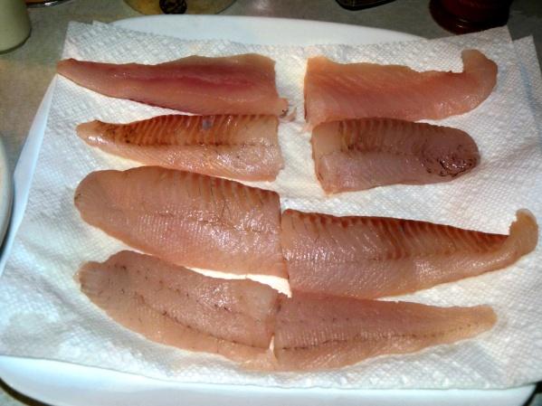 Walleye filets