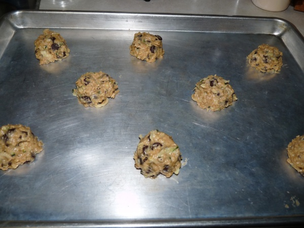 Place in 2 tablespoon portions on a baking sheet