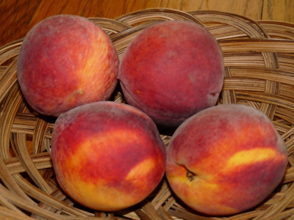Four of the lovely, ripe peaches
