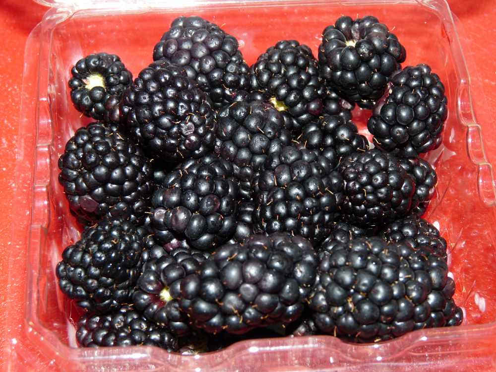 Wash blackberries and chop into roughly fourths