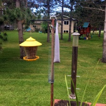 Slinky around the birdfeeder pole to prevent squirrels and chipmunks from eating seeds.