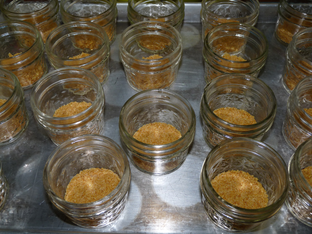 Mix graham crumbs, melted butter and sugar well. Divide among 14 half pint jars. Press down gently to form crust.