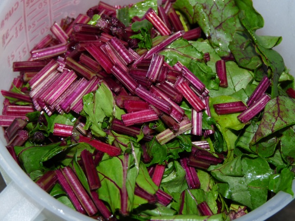 "Chop beet greens and stems into 1"" pieces"