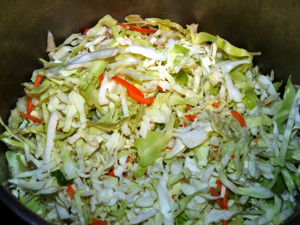 Add one package of cole slaw mix, the kind with shredded cabbage and carrots.
