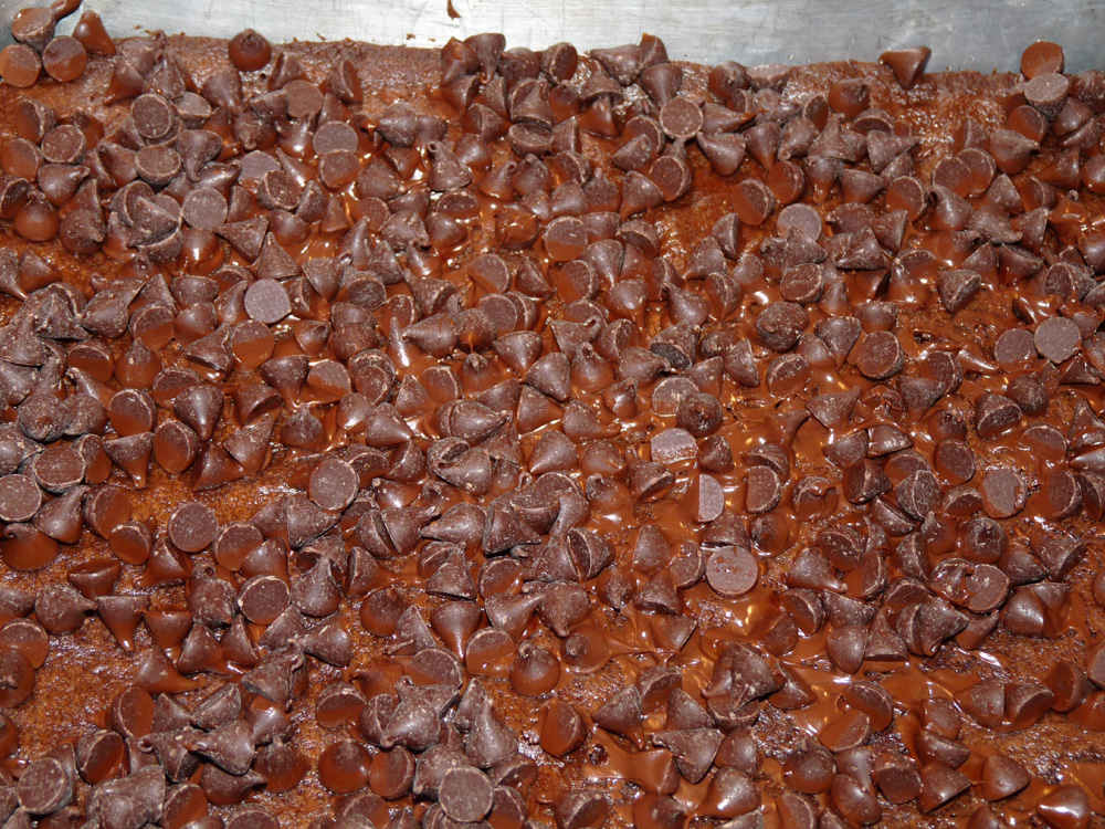 Spread bag of chocolate chips evenly over brownie bottom